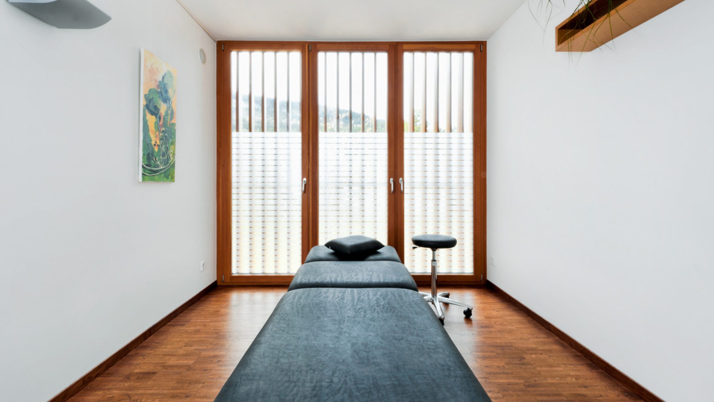 physiotherapie-lercher-schaefer, feldkirch